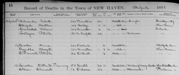New Haven Vital Records